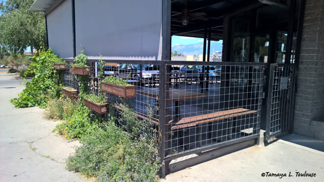 Patio at Tractor Brewery in Nob Hill in Albuquerque