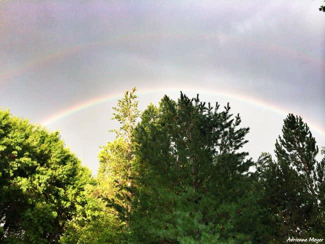 Rainbow at Summer Nights - Adrienne Meyer