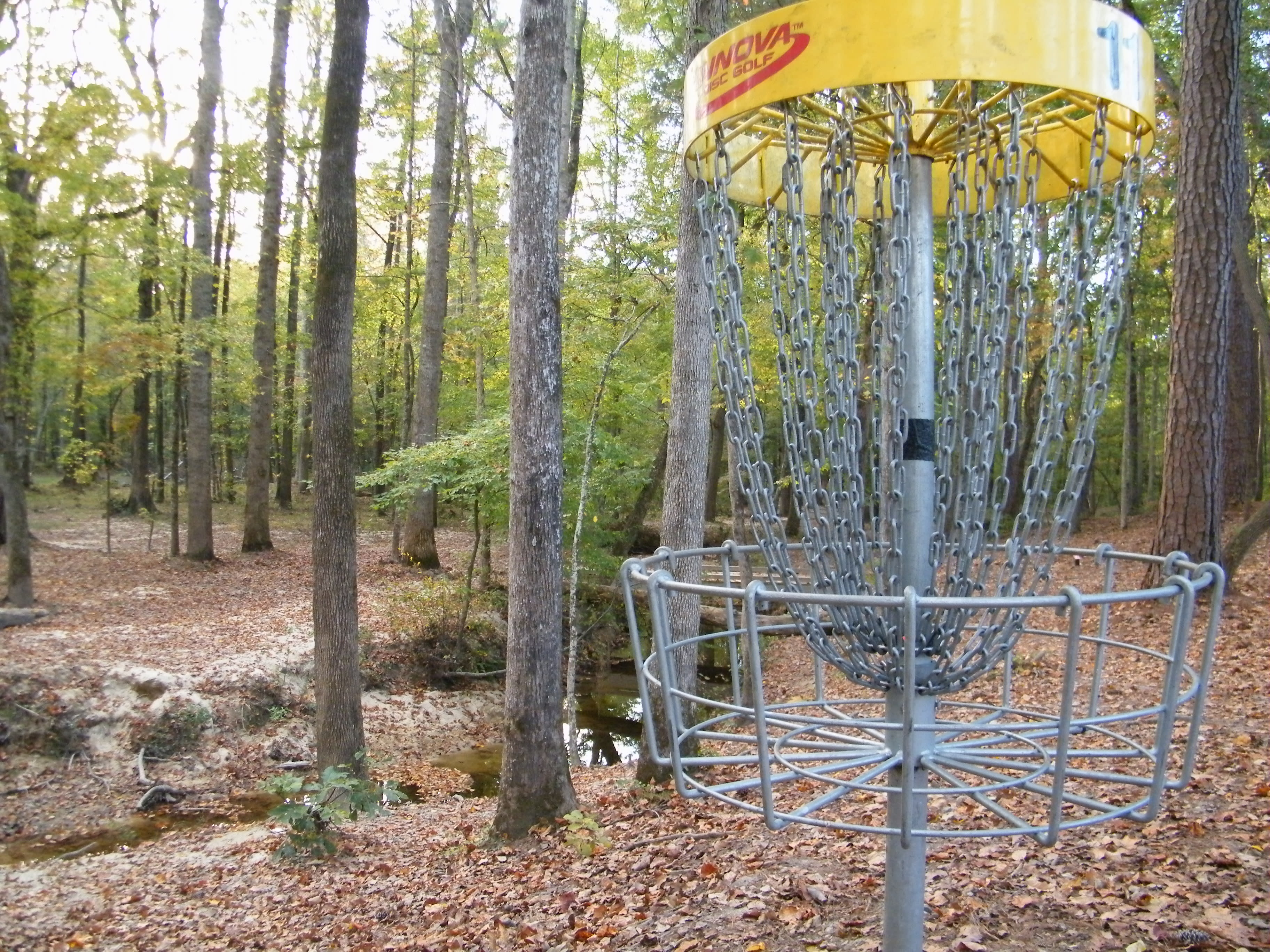 Disc Golf_Apex2