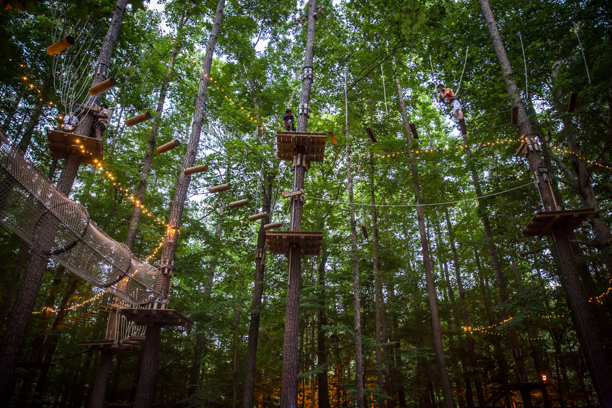 Zipline In A Forest In Virginia Beach