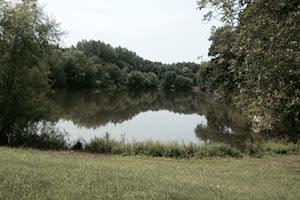 Lake Kenoyer, Brook