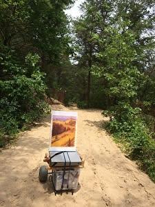 Carting through the dunes