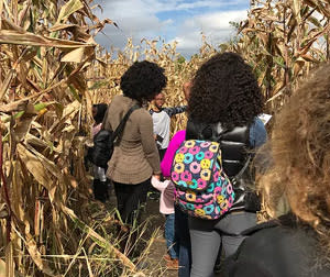 The corn maze at County Line Orchard
