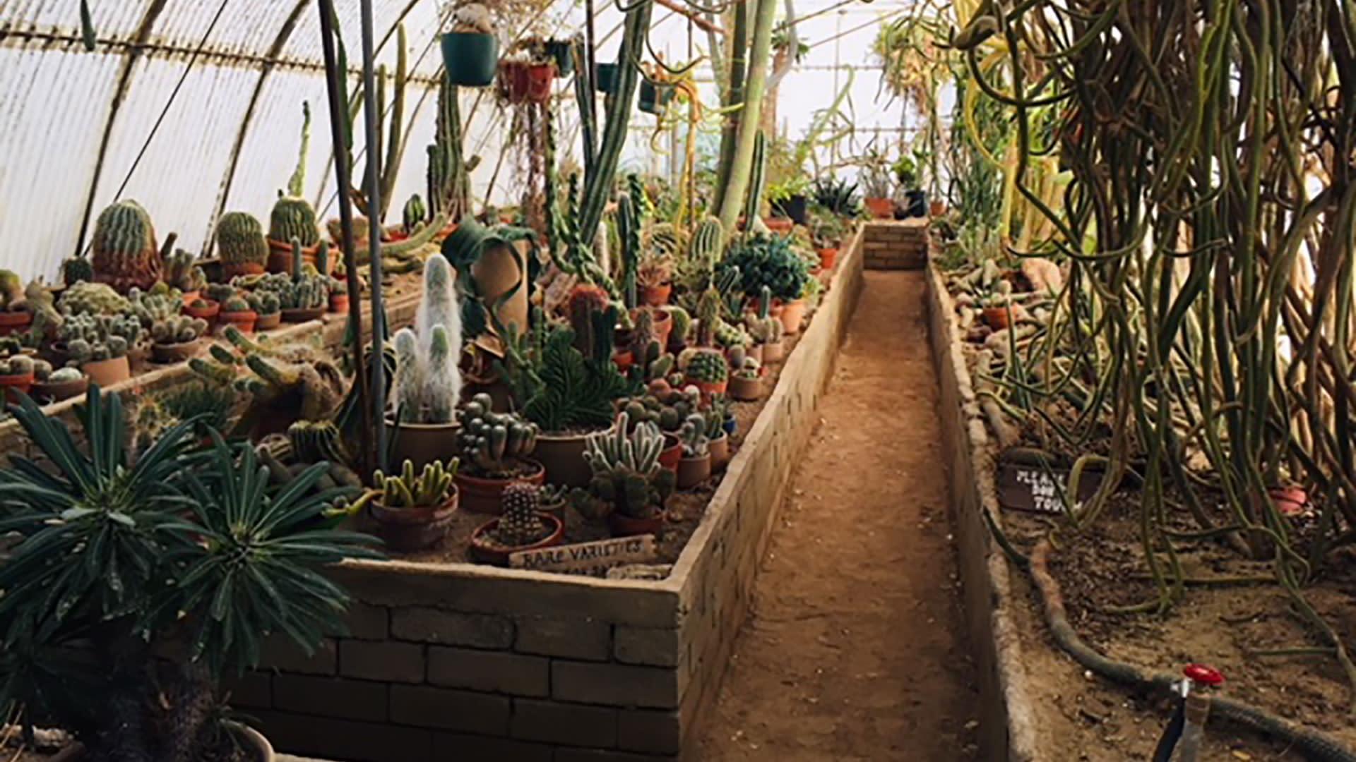 moortens botanical garden