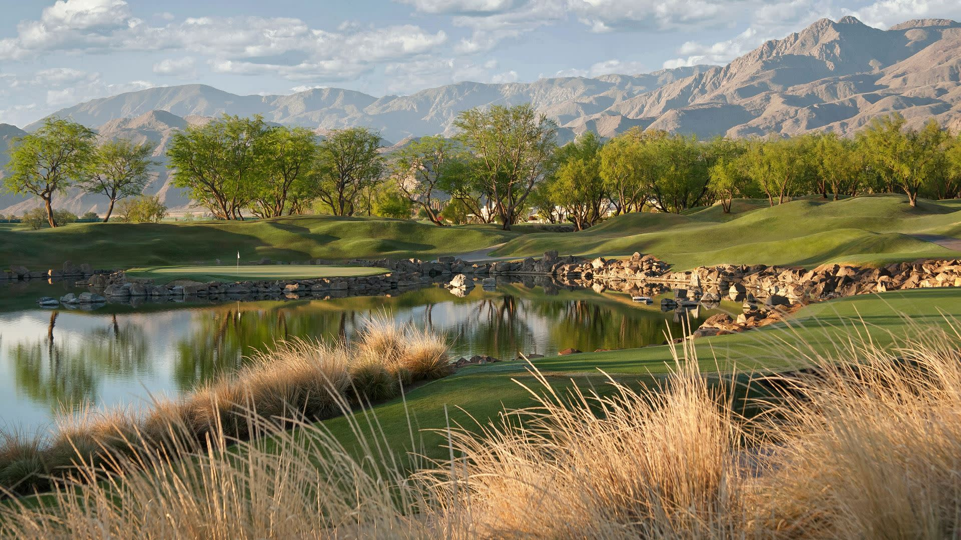 a view from the course during the careerbuilder challenge