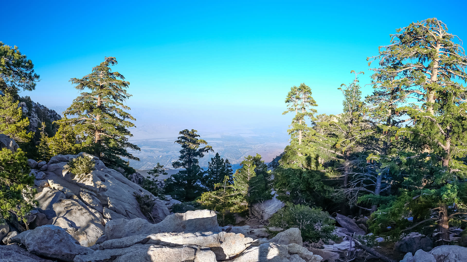 palm springs aerial tramway view
