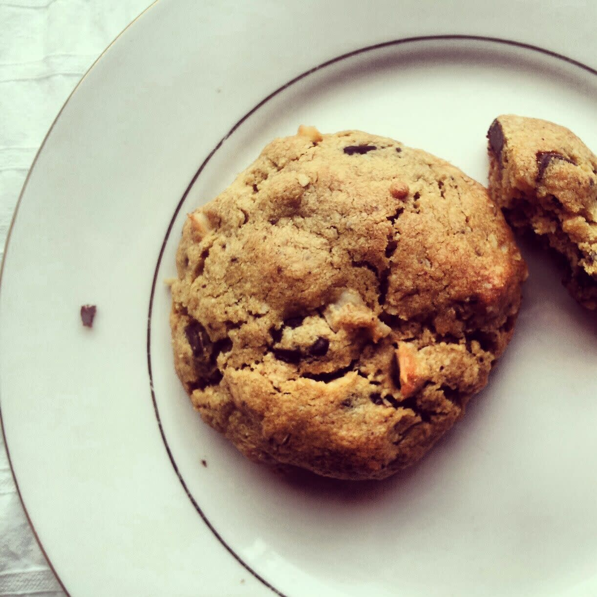 peanut butter oatmeal coconut chocolate cookies