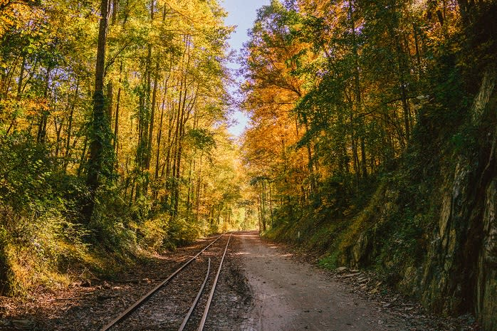 The York County Heritage Rail Trail is a great place for a peaceful fall walk. But if you stay past nightfall, you might just run into the spirit of a young train jumper.