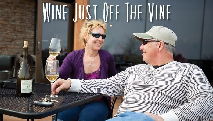 Explore the Mason-Dixon Wine Trail over two fall weekends during Wine Just Off The Vine.