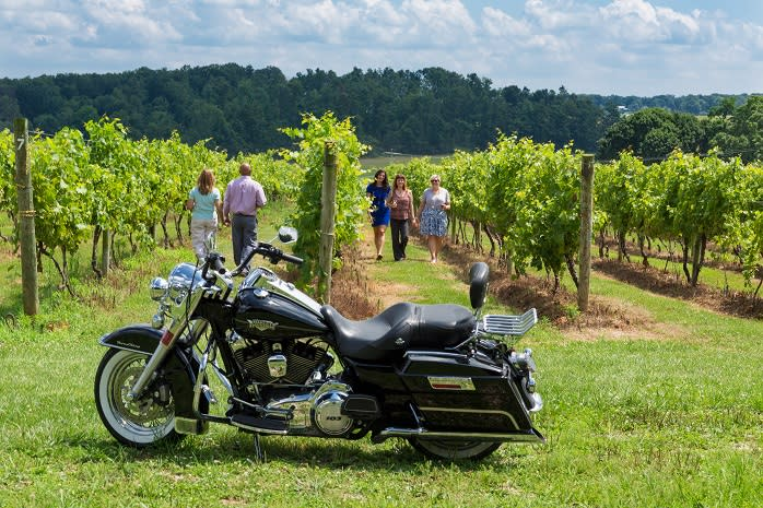 The upcoming spring weather has us eager for the day when vineyards all across York County are bursting with green.