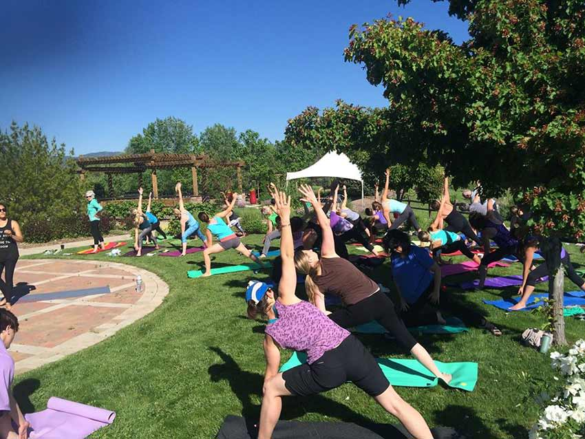 Yoga-at-the-Gardens