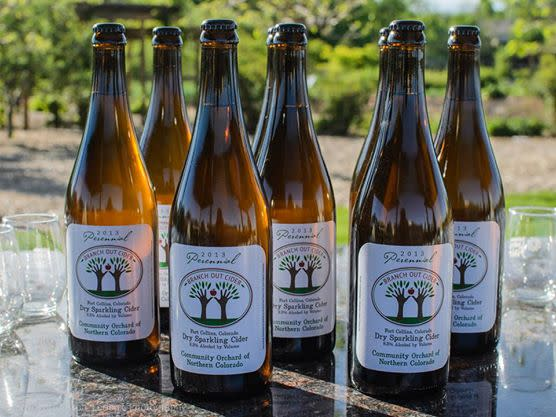 branch-out-cider