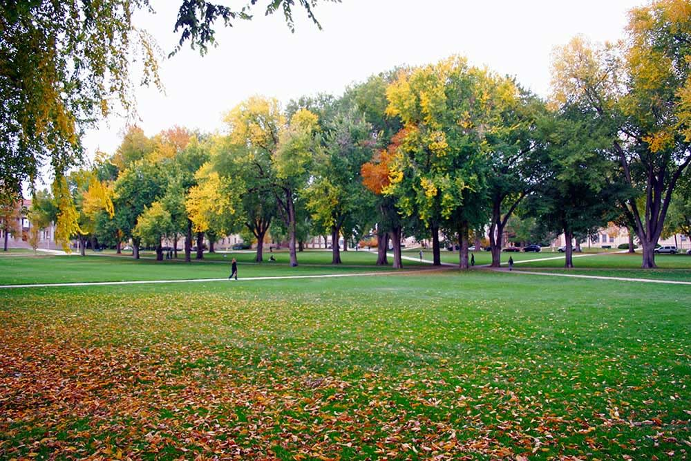 CSU-oval---Fall