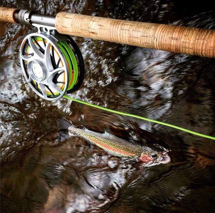 st-peters-fly-shop-fly-rod-with-fish