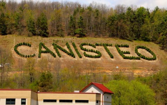 Canisteo Living Sign courtesy of John Babbitt