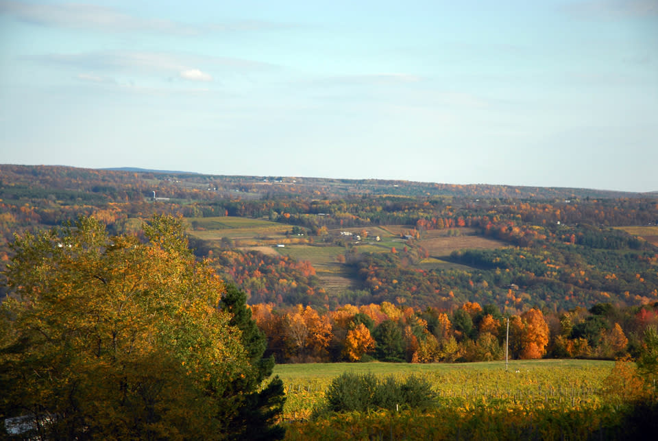 Fall in Corning and the Southern Finger Lakes