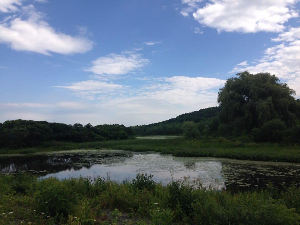 Birdseye Hollow Pond