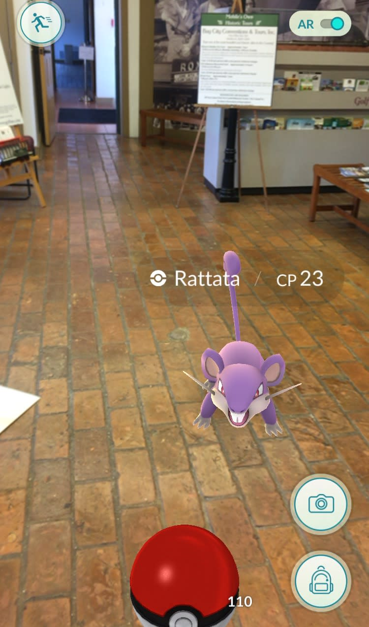 Pokemon at the Welcome Center