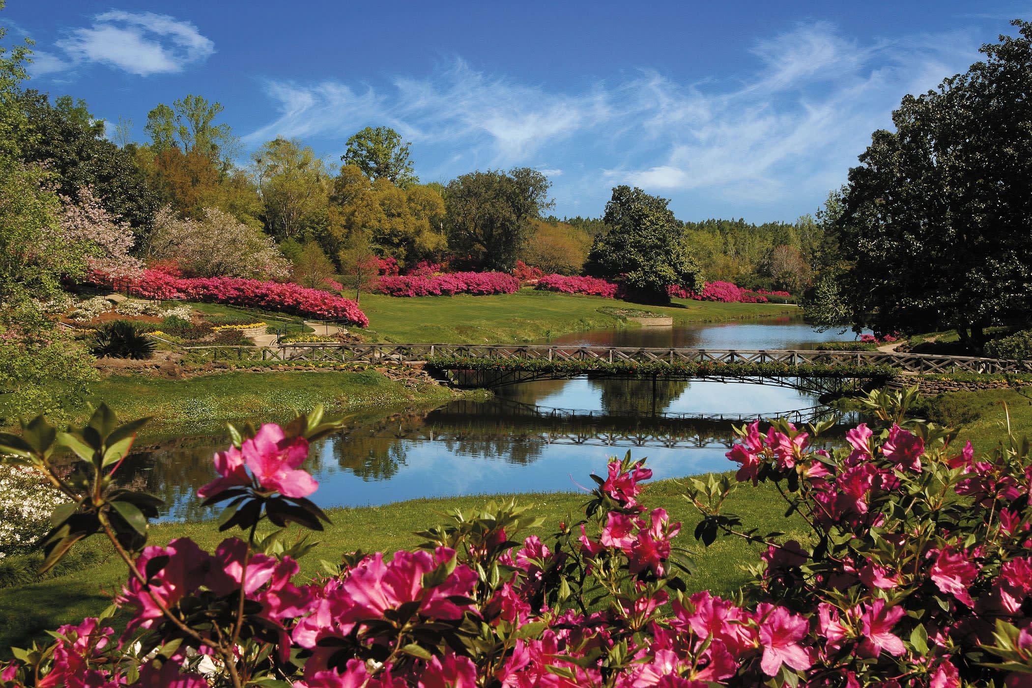 Bellingrath Gardens Mirror Lake Azaleas