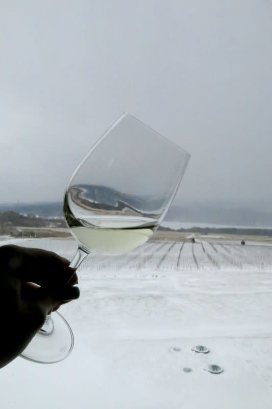 Cheers from snowy Keuka Lake!