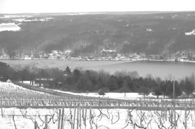 Keuka ice as seen from Bully Hill Vineyards.