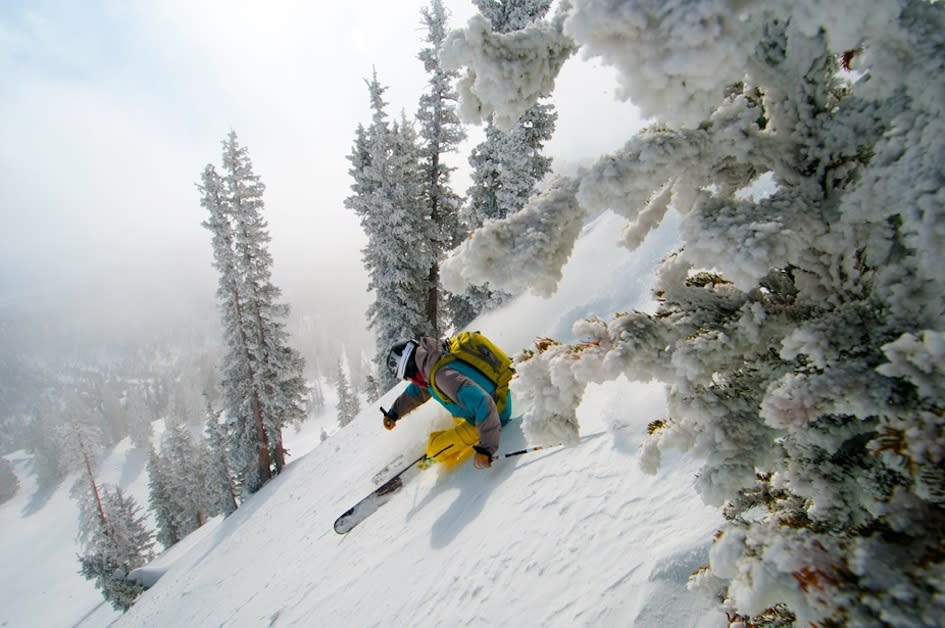 Mike Brown Dex Mills Skiing Alta
