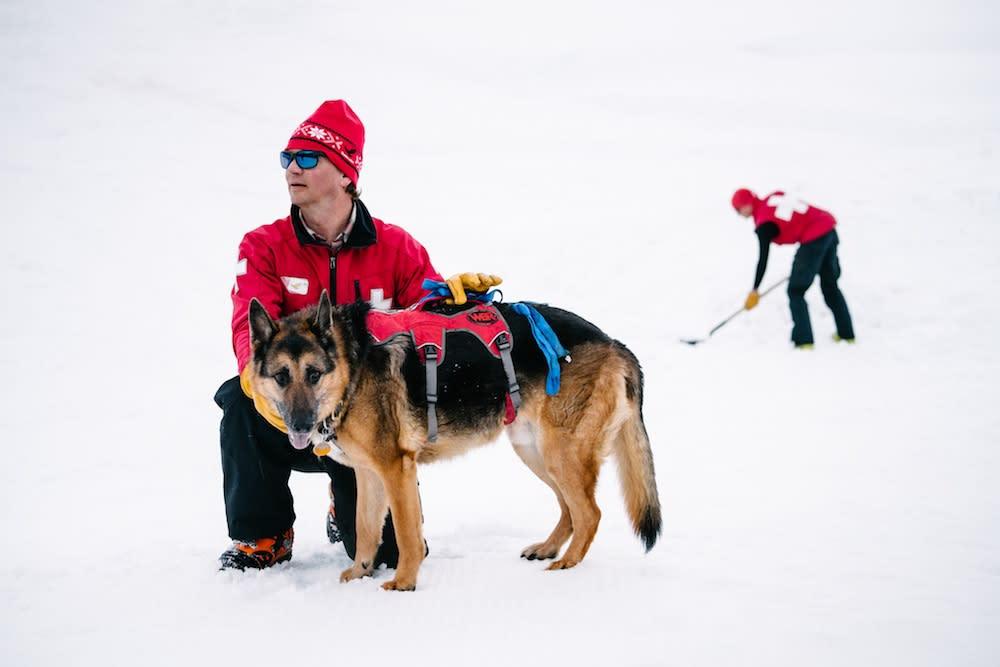 Patrol Dogs - Patroller with German