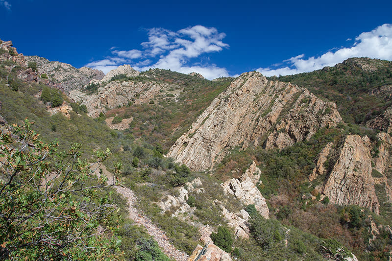 View of Tolcat Canyon about half-way up the trail