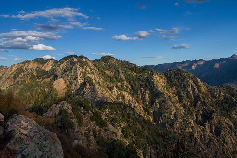Looking east from the summit toward Wildcat Ridge