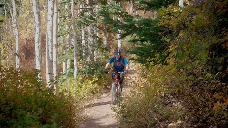 Climbing through pine and aspen