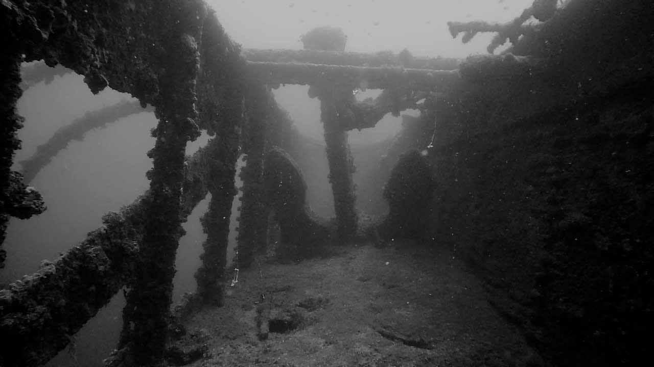 Diving-02