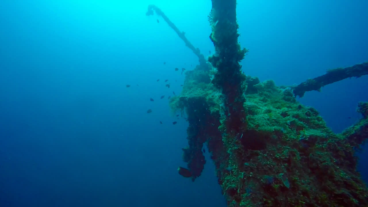 Diving-03