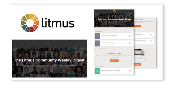 Litmus Email Example