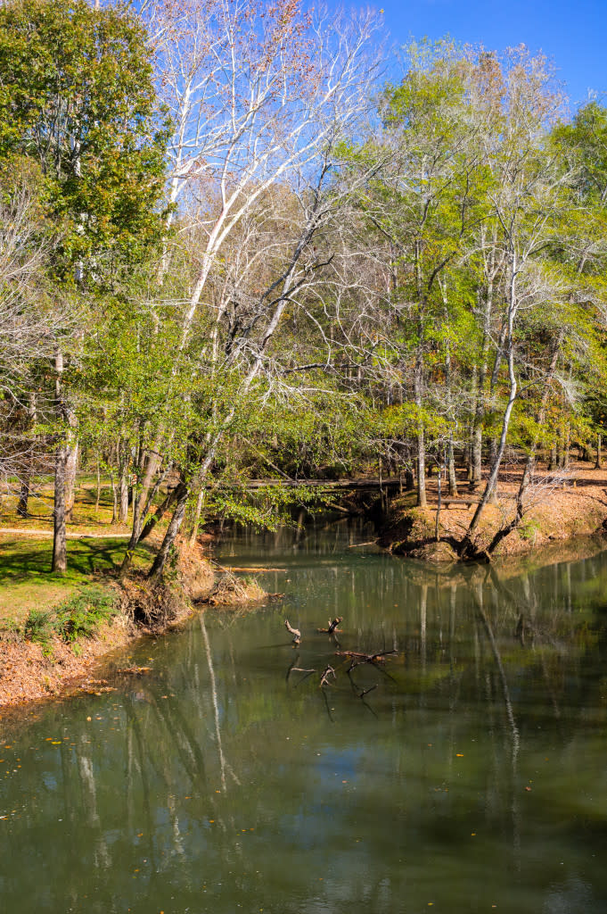 Get your winter hike on at Hays Nature Preserve in Huntsville, Alabama