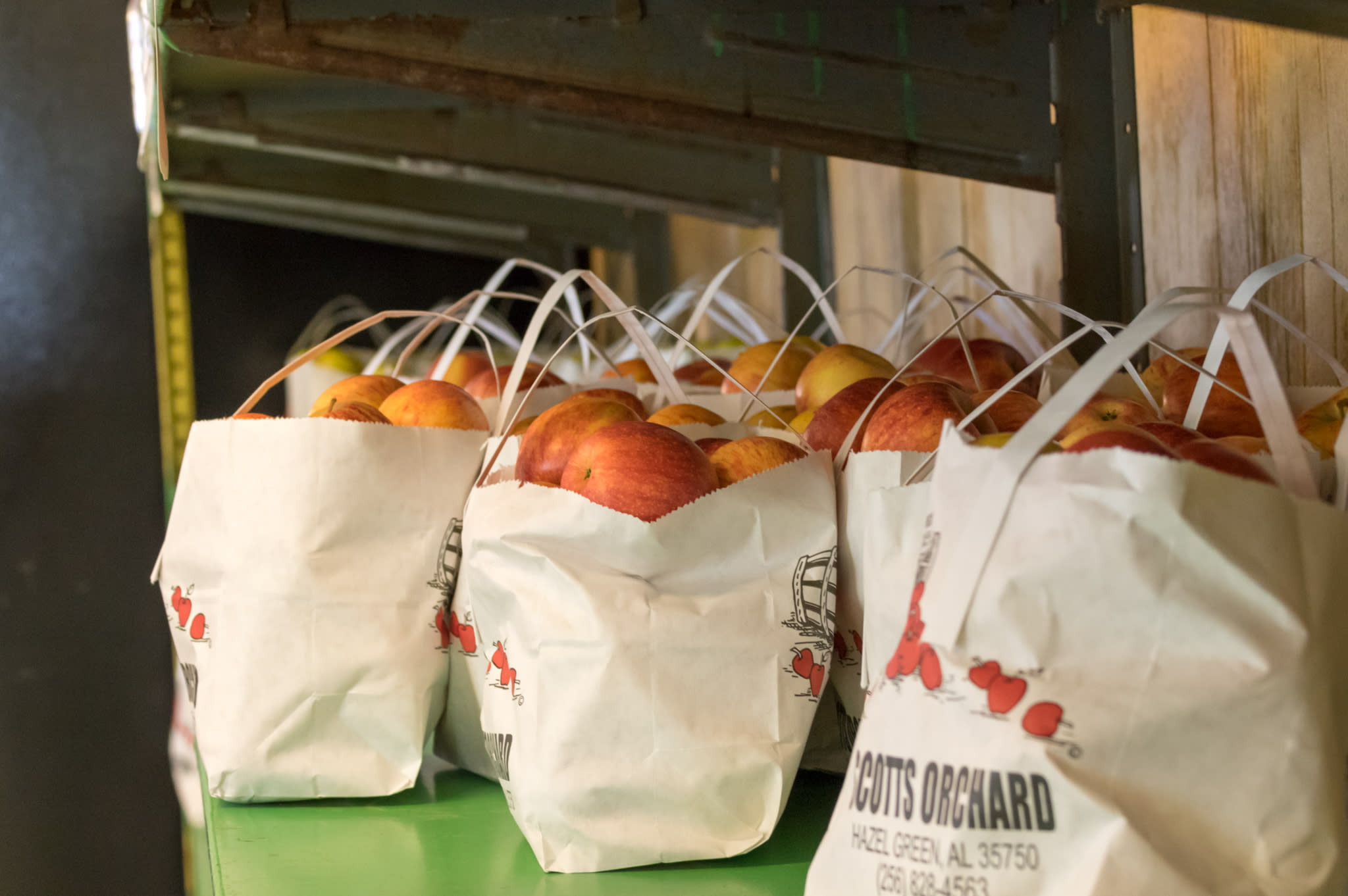 This is a photo of bags of apples from Scott's Orchard.