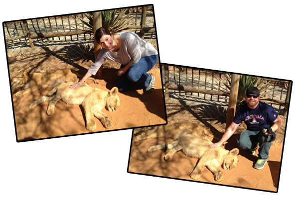 South Africa - Animals 2