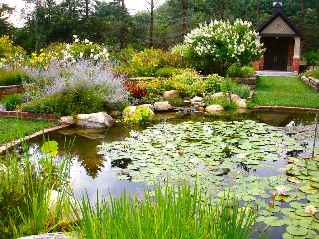 DeFries Gardens provides a stunningly beautiful setting for a marriage proposal.