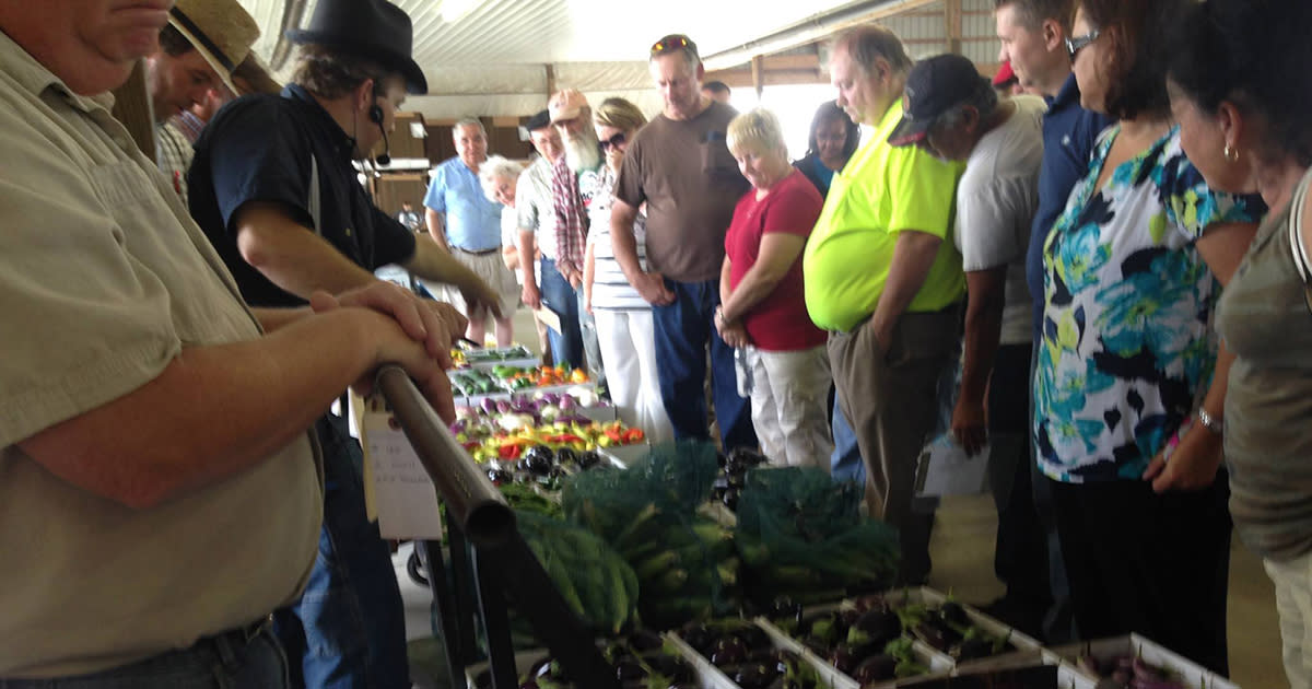 Close-up of people standing in front of and behind a table filled with produce at a produce auction as an auctioneer points out the next item for bid