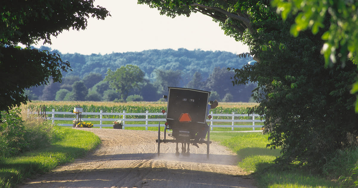 Amish buggie on a dirt road in the Amish country of Elkhart County Indiana