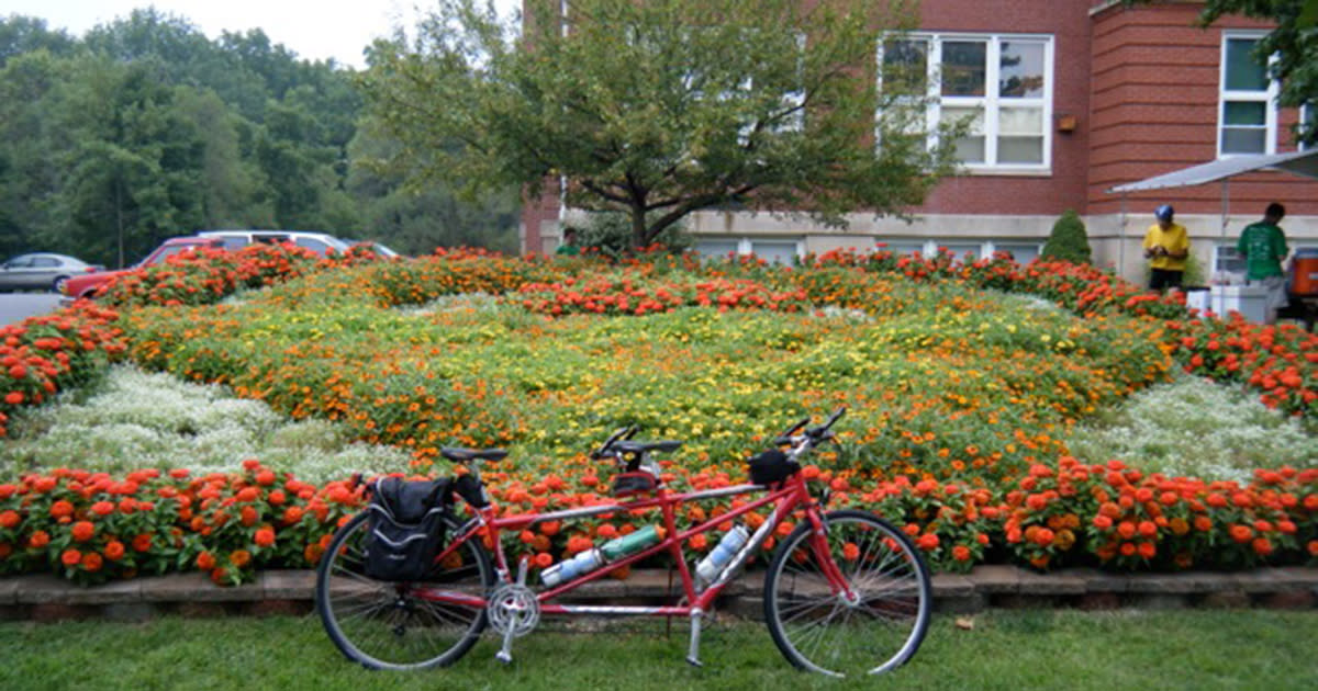 Red tandem bicycle parked in front of a garden with red and orange flowers in a quilt pattern