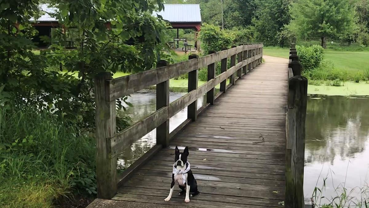 Bonneyville Mill 3 Vito