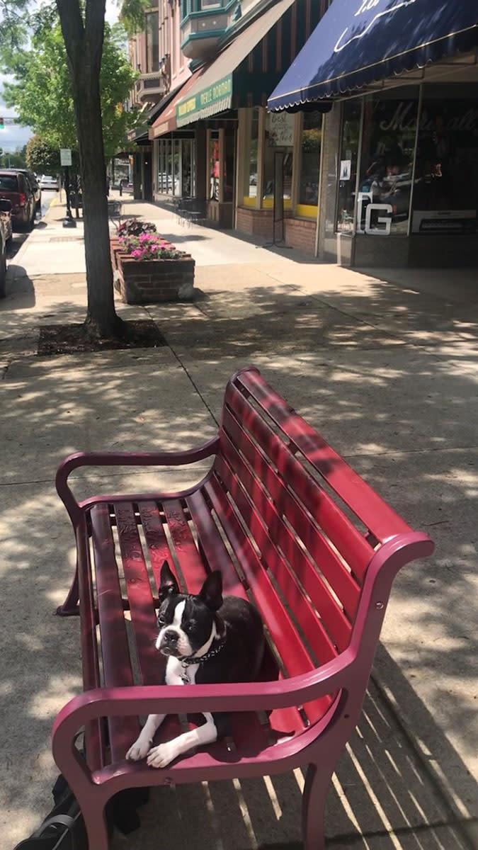 Goshen Downtown Vito