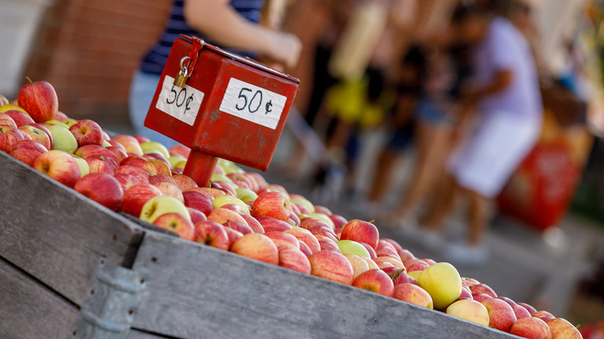 """A crate of apples with a box in the middle that says """"50 cents"""" at the Nappanee Apple Festival"""