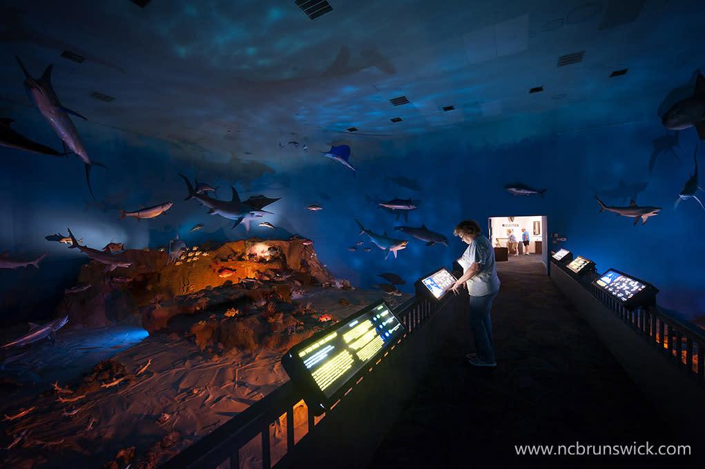 Museum of Coastal Carolina
