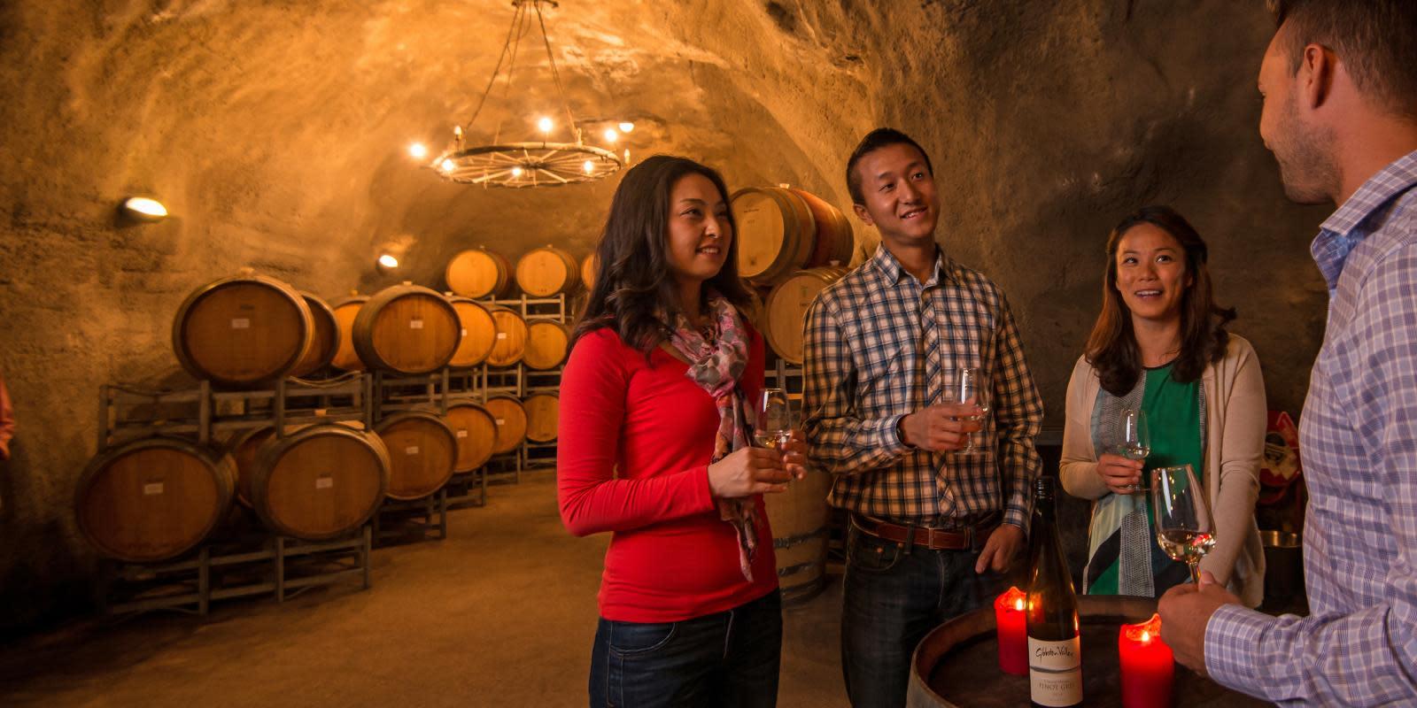 Wine-Cave-Gibbston-Valley-Queenstown