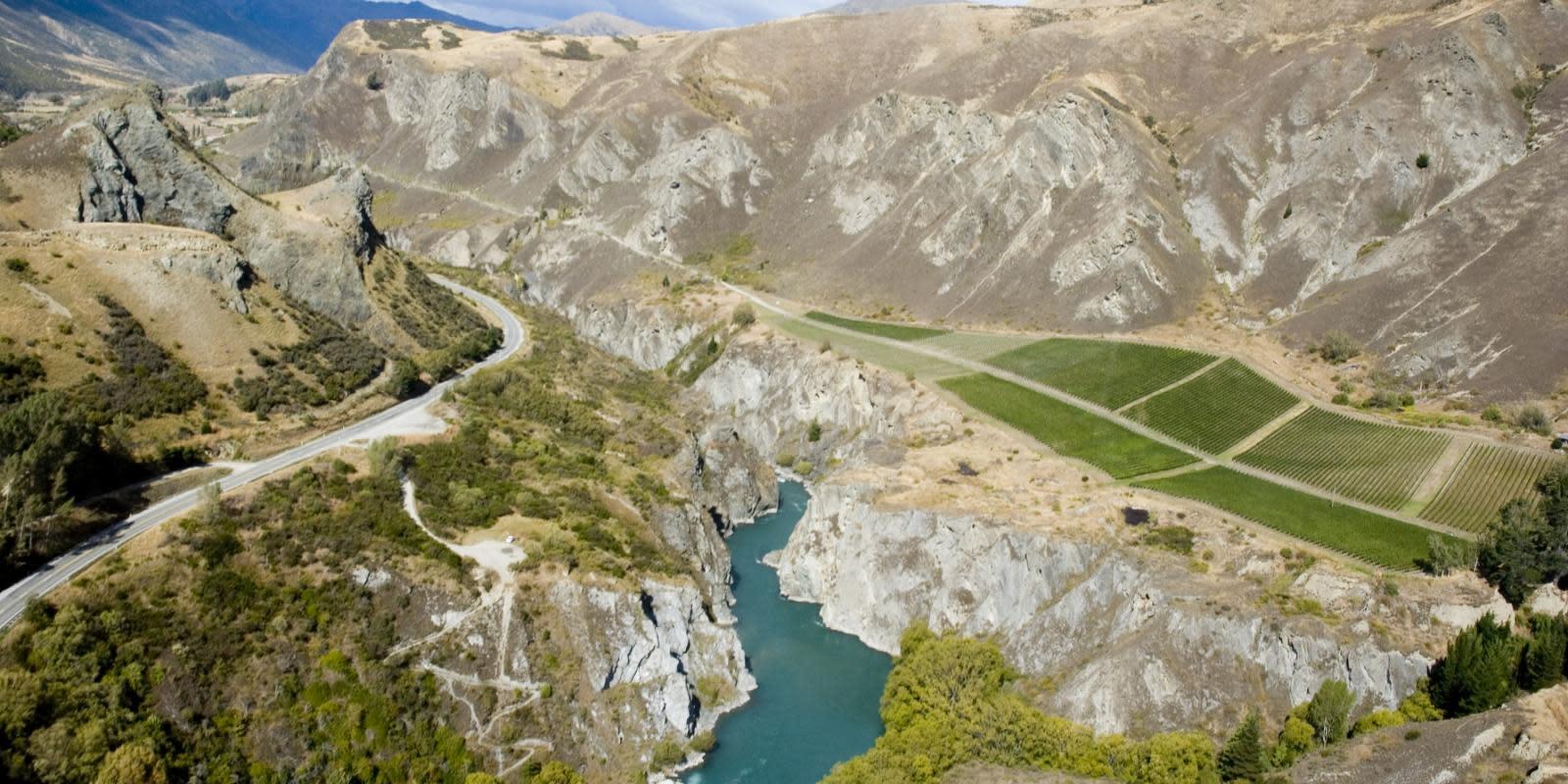 Chard-Farm-Winery-Near-Queenstown-New-Zealand