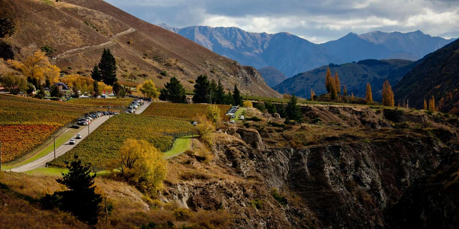 Overlooking Gibbston Valley