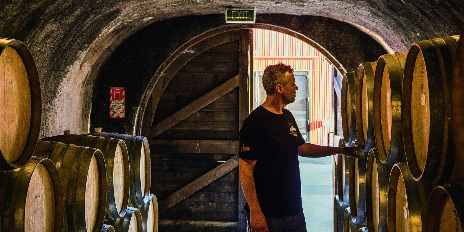 Christopher Keys - Autumn wine barrels