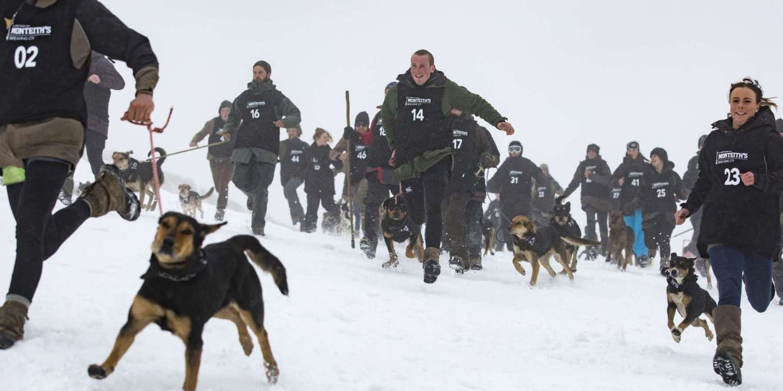 Monteith's Dog Derby antics