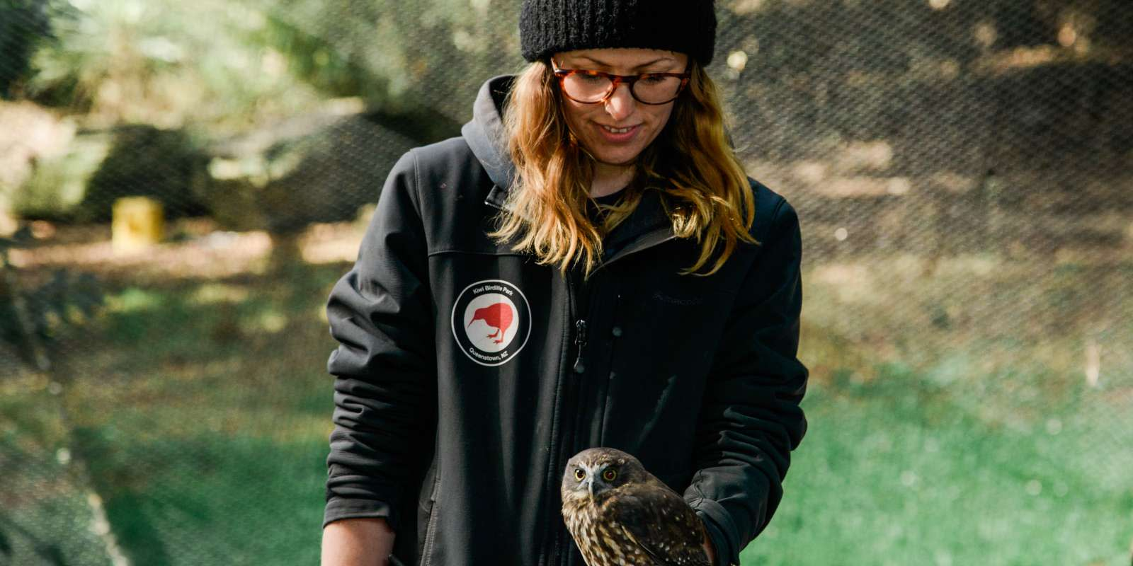 Conservation Shows at the park. Morepork Owl.
